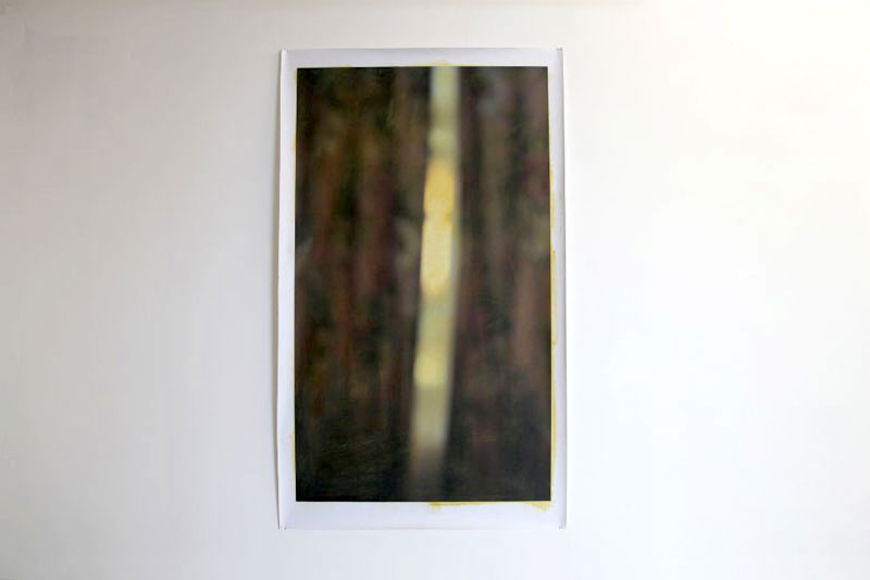 Curtains (yellow ochre) 2013, oil on print, 154 x 91cm
